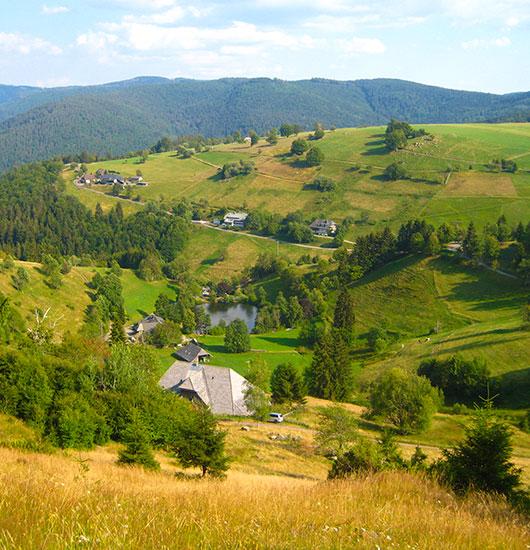 Unsere Garantie der schöne Schwarzwald